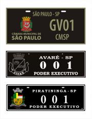 Placas de Veículos Oficiais